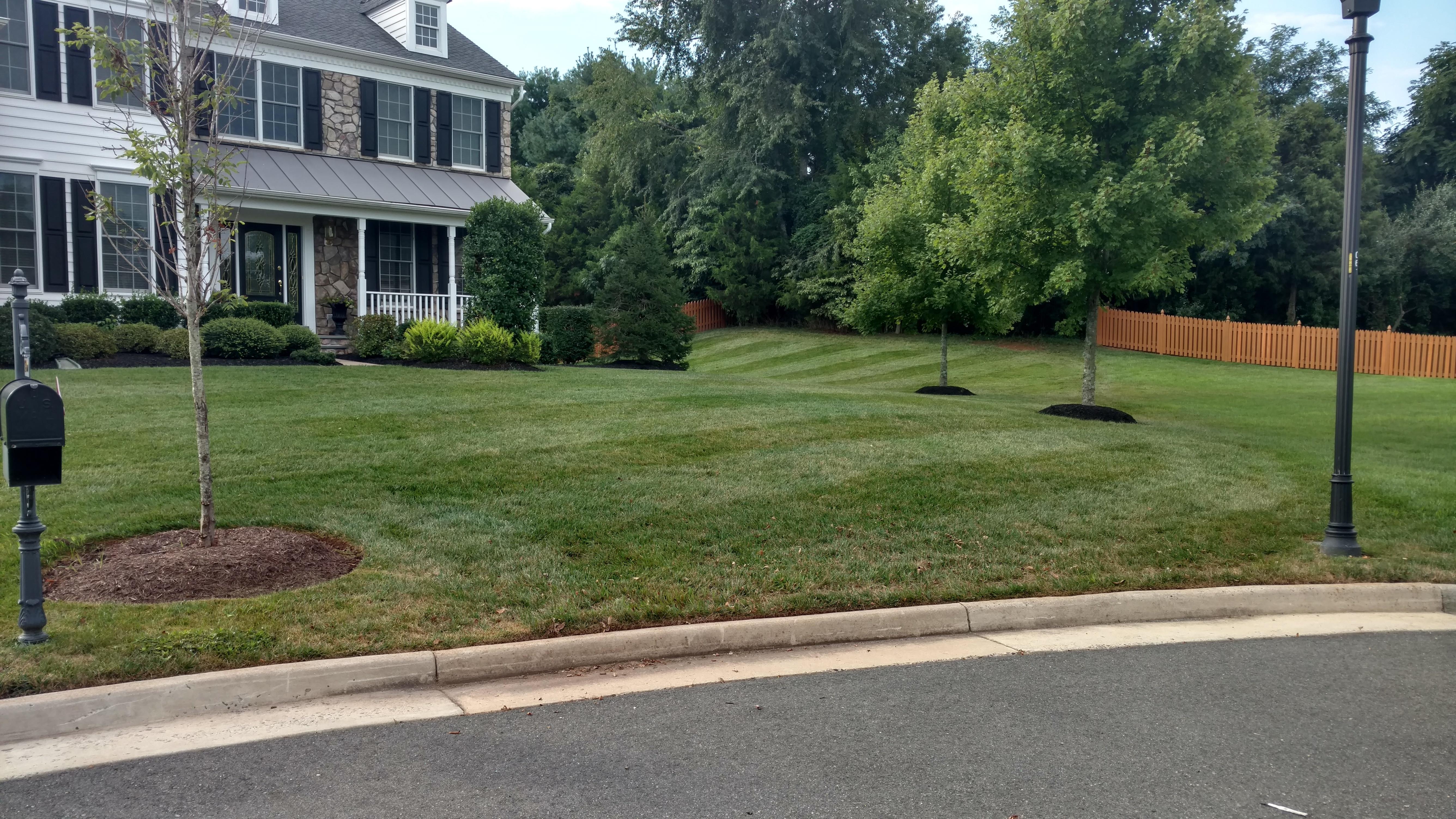 landscaping services in gainesville va 703 731 5887 wren u0027s