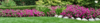 Landscaping service page banner