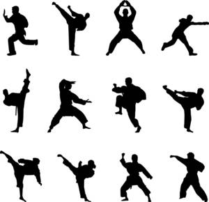 Martial arts silhouettes 1024x990