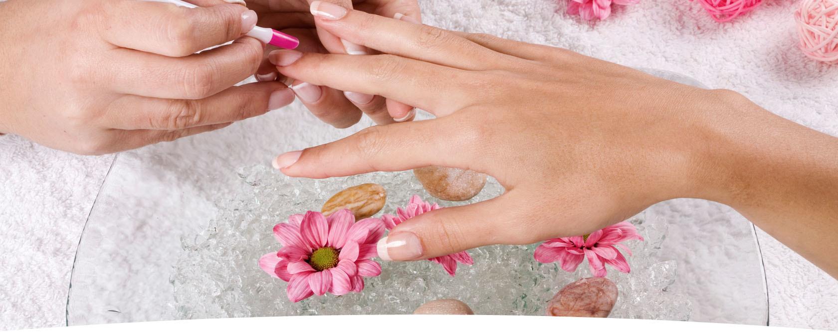Nail Salons Divider Purple