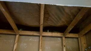 Bathroom reno   ceiling gutted