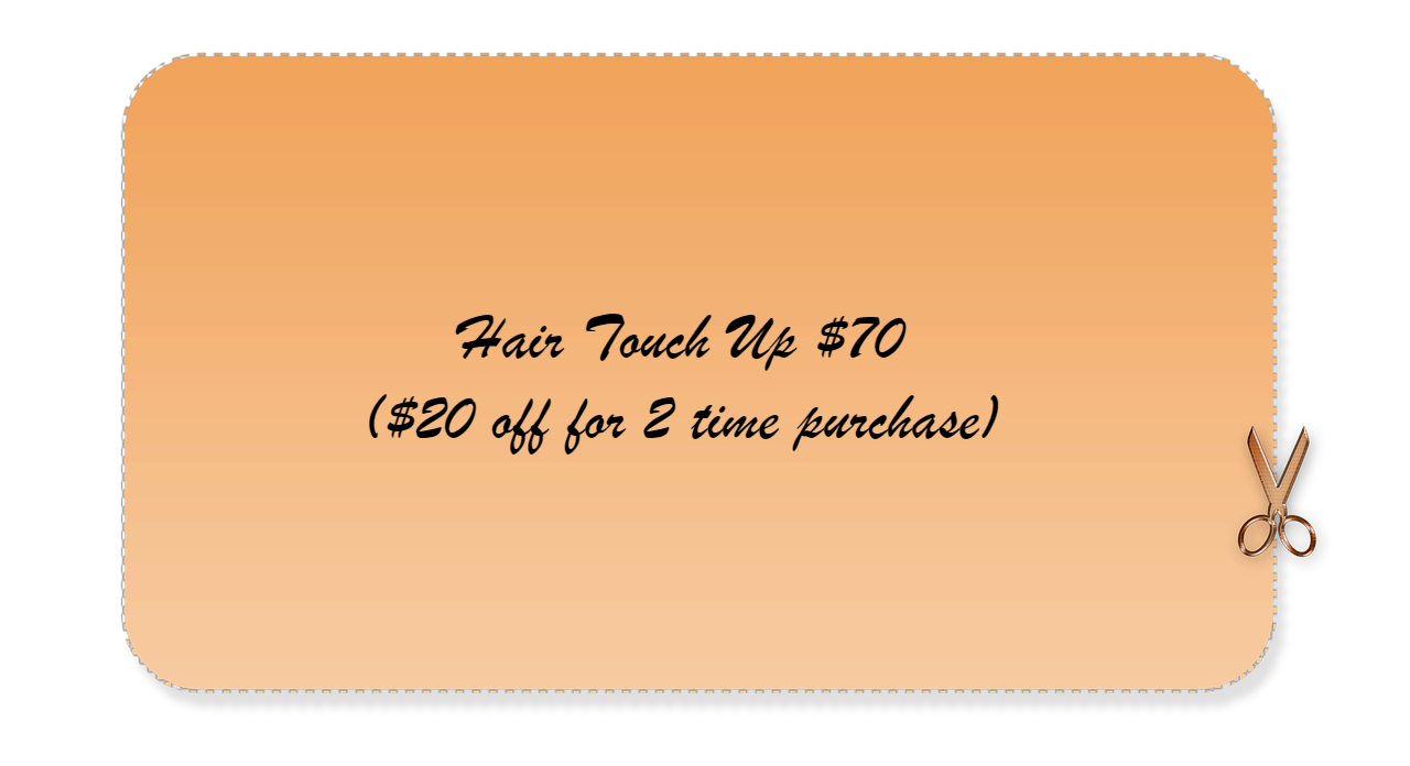 Hair Touch Up $70 ($20 off for 2 time purchase)