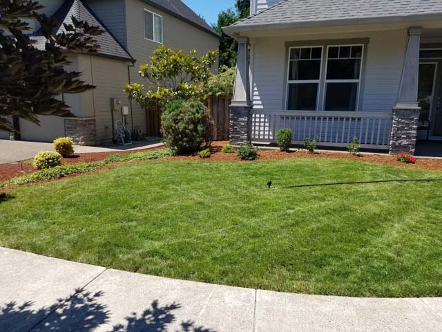 toms lawn care provides yard work garden maintenance lawn care and landscaping services for both residential and commercial customers - Toms Lawn And Garden