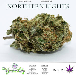 THE_GREEN_LILY_NORTHERN_LIGHTS_CANNIBIS_STRAIN