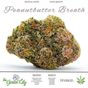 THE_GREEN_LILY_peanutbutter_breath_STRAIN_MEDICAL_MARIJUANA_BUD_
