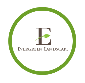 Evergreen-landscape