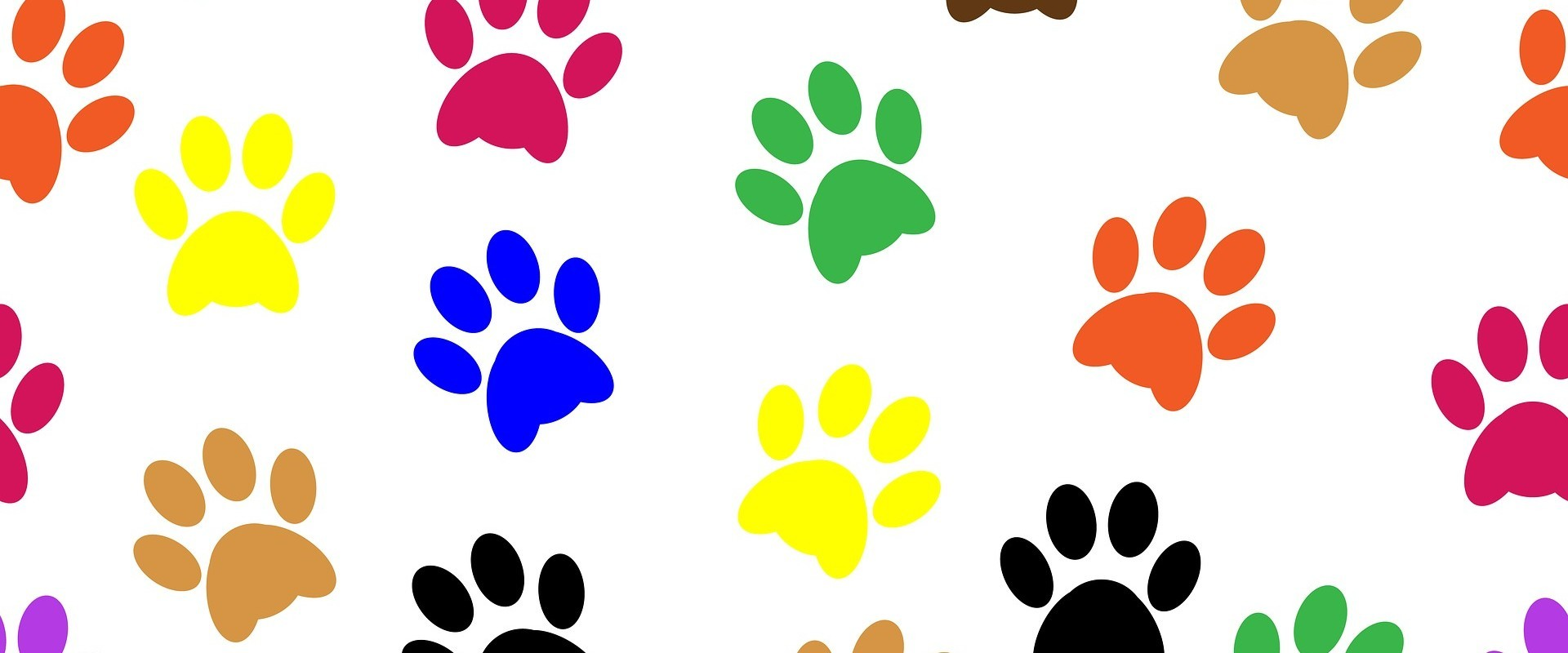 Pawprints about