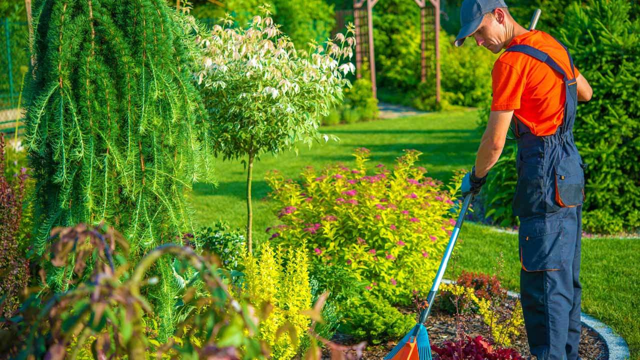 Landscaping 0243534