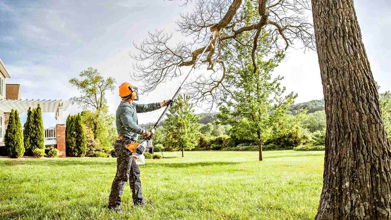 Services 9 treetrimmer